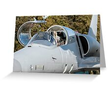 Fighter jet. Greeting Card