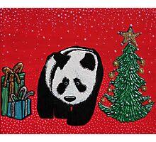 A Panda For Christmas Photographic Print