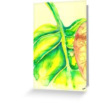 Curled Up Leaf Greeting Card