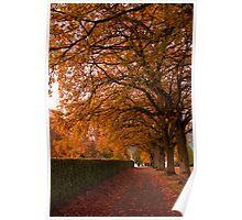 Fall Corridor Poster