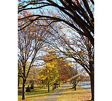 Blustery Autumn morning, New York City  Photographic Print