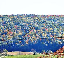RURAL NEW YORK STATE by JoAnnHayden