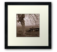 Sepia Tree Framed Print