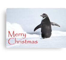 Merry Christmas from Antarctica Metal Print
