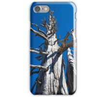 Three Skeletal Trees With Blue Sky iPhone Case/Skin