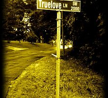 True Love Lane by Karen Tucker