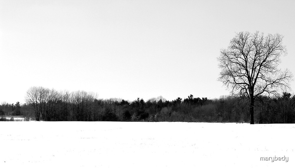 Dead of Winter by marybedy