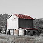 Abandoned Barn by Jenelle  Irvine
