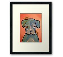 Pitbull Love! Framed Print