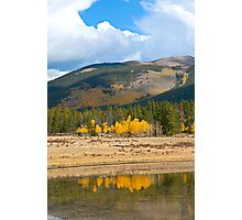 Kenosha Pass Aspens 4 Photographic Print