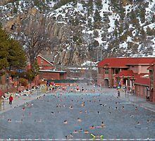 Glenwood Springs Hot Springs in Winter by Robert Meyers-Lussier