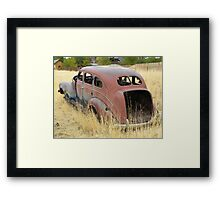 Out to Pasture II Framed Print