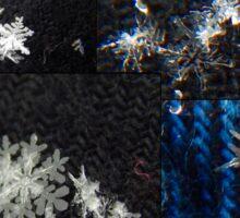 Macro Snowflakes Sticker