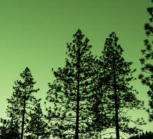 Green Trees Sticker