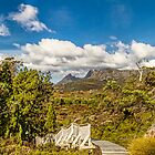 Snake Hill, Cradle Mountain, Tasmania, Australia #4 by Elaine Teague