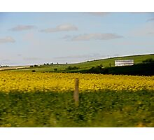 Bright fields Photographic Print