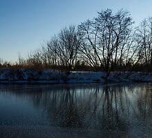 Icy Cool Blue Reflections by Georgia Mizuleva