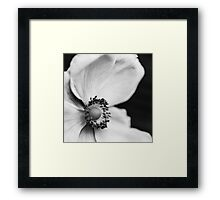 Flowerscapes - BW Seeds Framed Print