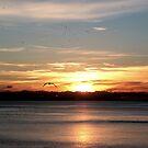 Brighton Sunset  by rsangsterkelly