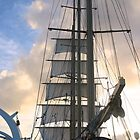Square sails on Star Flyer by Ren Provo