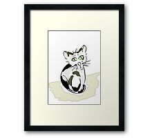 Black and white cat.  Framed Print