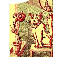 Lusty ~ The Cat and The Rose Photographic Print