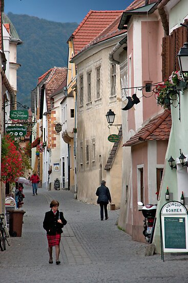 Life In Durnstein by phil decocco