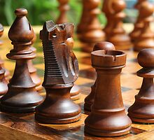 Chess Men and Black Knight by Janet Jenkins