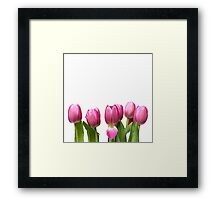 Tulips in Space.... Framed Print