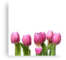 Tulips in Space.... Canvas Print