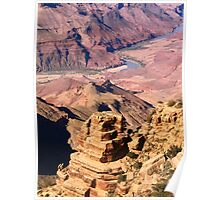 Grand Canyon and Colorado River  Poster