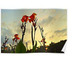 Flowers Reaching Sky Poster
