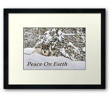 Peace on Earth Framed Print