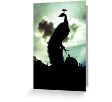 Covent Garden Peacock Greeting Card