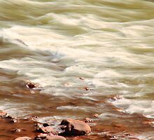 White Water Rapids, Colorado River by Roupen  Baker