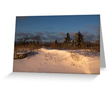 The Morning After the Snowstorm Greeting Card