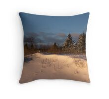The Morning After the Snowstorm Throw Pillow