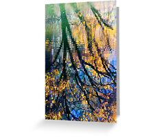 Reflections II Greeting Card