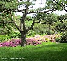 Rhododendrons by Tree by Kathie  Chicoine