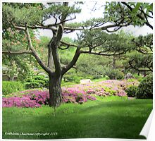 Rhododendrons by Tree Poster