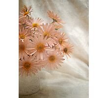 Coral Pink Still Life Photographic Print