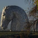 another kelpie by joak