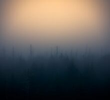 Into The Dense Fog by NFirebaugh