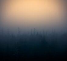 Into The Dense Fog by NFirebaugh