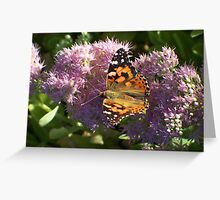 Beauty on Blooms Greeting Card