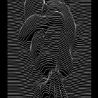 joy joy division by Bleee