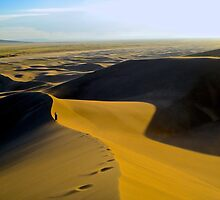 Dune by Burr Tweedy