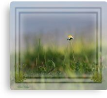 Tiny Can Be Beautiful Canvas Print