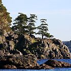 Creyke Point East Sooke Park  by TerrillWelch