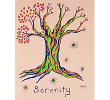 Calm Reflections Serenity Tree Photographic Print
